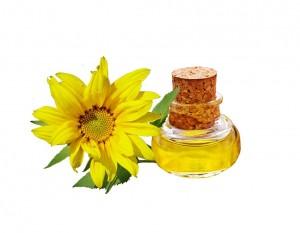 sunflower-744232_960_720